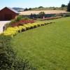 Stav zahrady tři roky po realizaci